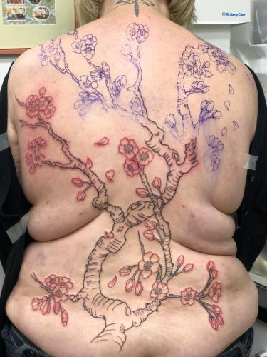 Work in Progress – Cherry Blossom (Sakura) Work In Progress