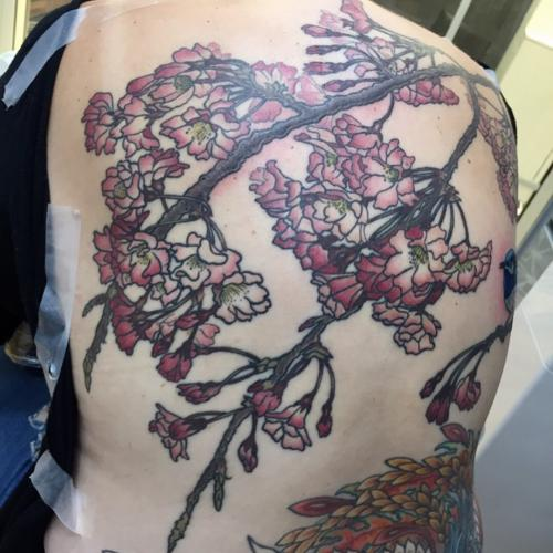 Sakura Back Piece Tattoo At Bottom Not By Me